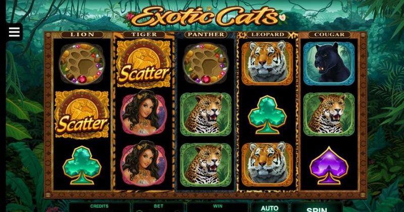 Spela på Exotic Cats online slot från Microgaming spelautomat gratis nu | Casino Sverige