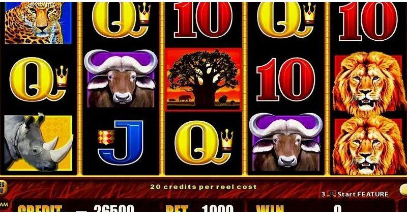 Spela på African Big 5 Slot Online Från AristoCrat spelautomat gratis nu   Casino Sverige